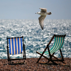 Maximising your social media over the summer