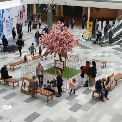 Banishing the blues with beautiful birdsong at intu Watford!