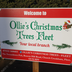 Buy your Christmas Tree in Fleet in a COVID secure environment