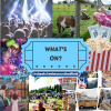 Your weekly guide to what's on in Welwyn Hatfield - 25th to 31st May