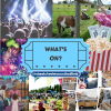 Your weekly guide to things to do in Welwyn Hatfield - 15th to 21st September