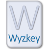 How IT Support Wyzkey Helps Your Local Business