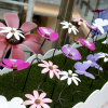 Pretty Poppy, Butterfly and Daisy display unveiled at intu Watford