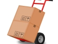 hand truck for removals