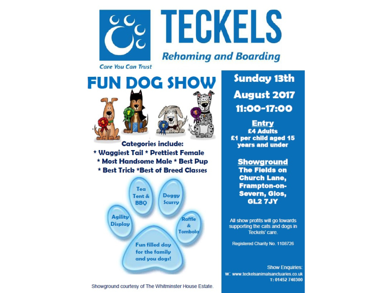 Teckels Animal Sanctuaries Fun Dog Show