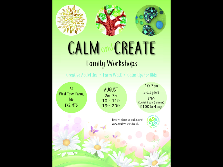 CALM and CREATE family workshop