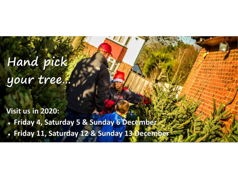 4th Ewell (Nonsuch) Scouts Christmas Tree Sale @nonsuchtrees