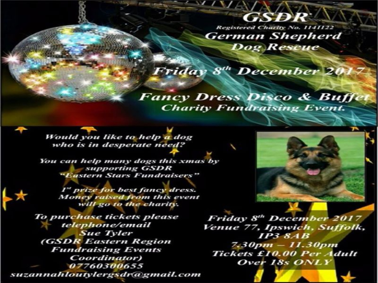 German Shepherd Dog Rescue GSDR Fundraising Event