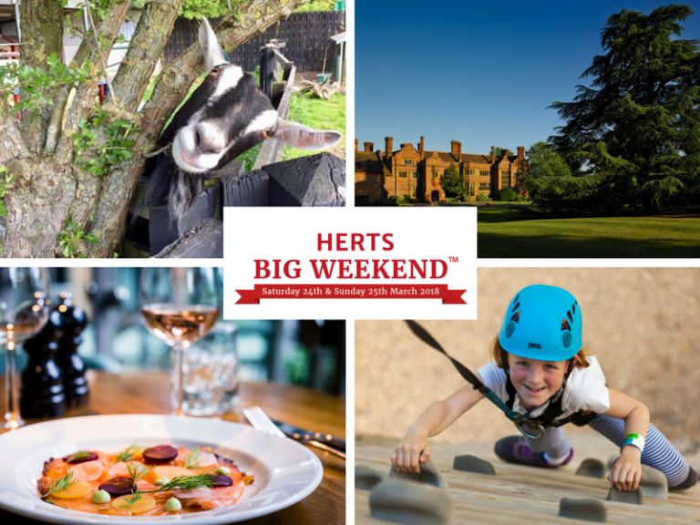 Herts Big Weekend