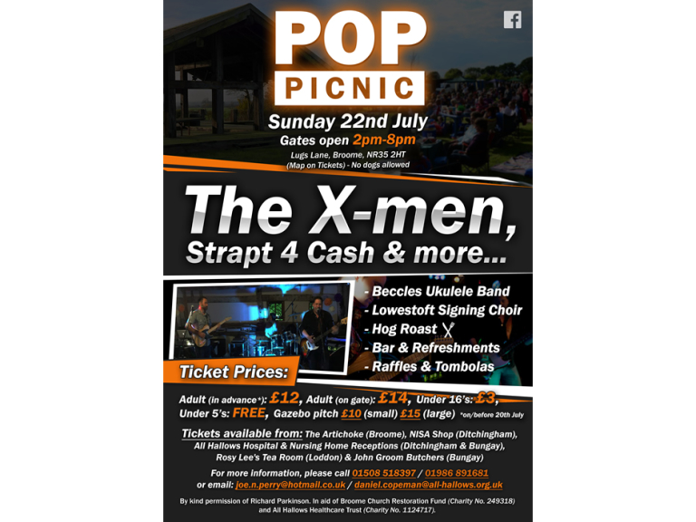 Pop Picnic In The Park 22nd July