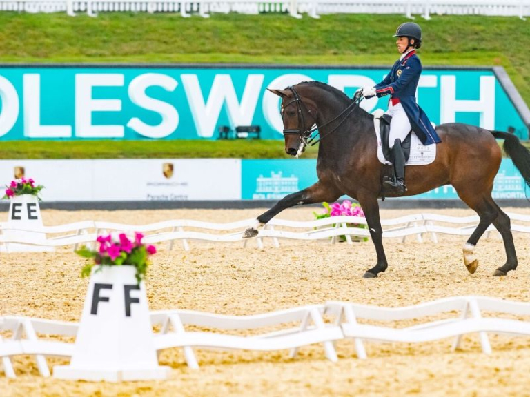 The Equerry Bolesworth International Horseshow 2020