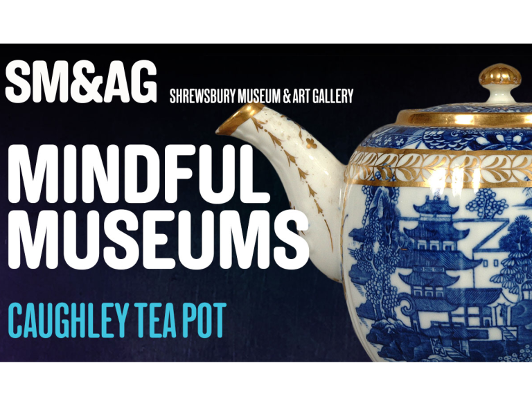 FREE entry to Shrewsbury Museum & Art Gallery