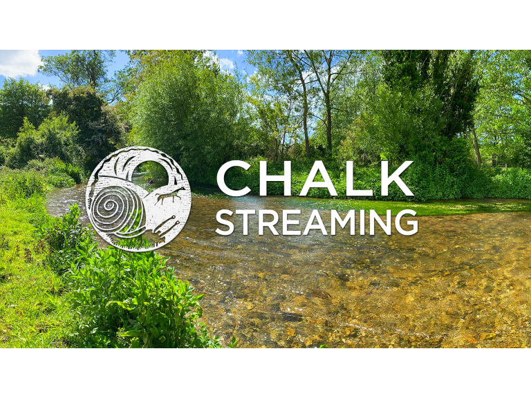 Nature Walk: Chalk Streaming - River Stour