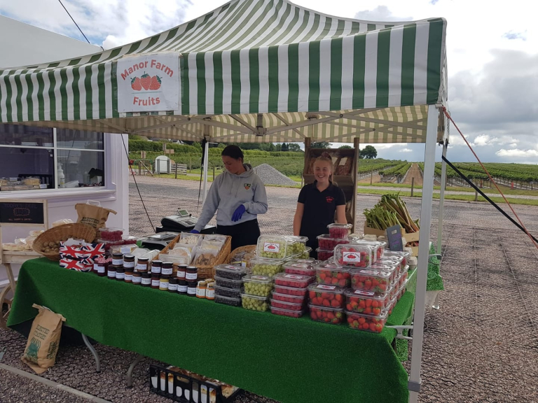 Drive Thru for Strawberries at Manor Farm Fruits