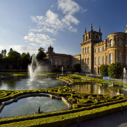 Blenheim Palace Flower Show 2020