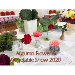 Autumn Flower & Vegetable Show 2020