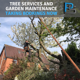 Power Steam Ltd taking bookings now for tree services and garden maintenance!