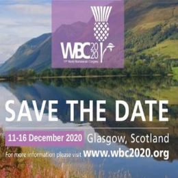 WBC 2020 | 11th World Biomaterials Congress | 11-16 December 2020 | Glasgo