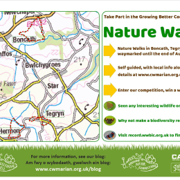 'Growing Better Connections' - Nature Walks