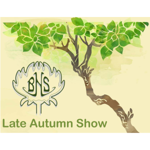 Late Autumn Show with Banstead Horticultural Society