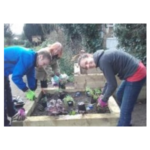 Volunteering at Winsford Gardens, Penge