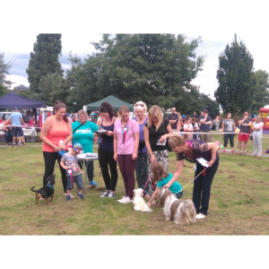 ANNUAL PDSA FUN DOG SHOW