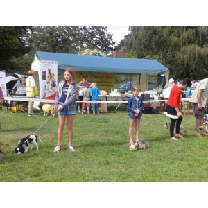 Friends of Damson Parks Dog Show and Fun Day