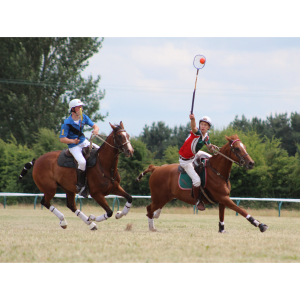 Summer Fayre and Polocrosse Finals