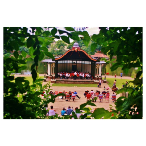Central England Concert Band at Walsall Arboretum