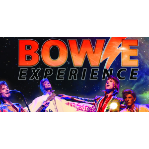 Bowie Experience in Shrewsbury