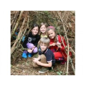 Woodland Adventure at Earth Trust Centre