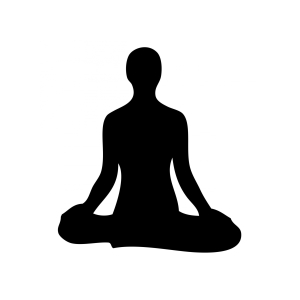 Beginner's Meditation Classes
