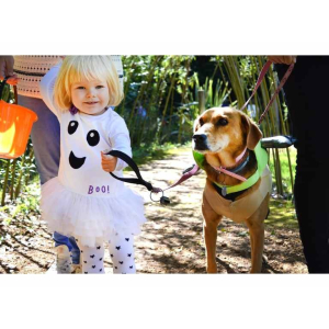 The Halloween Howl – for People & Pets in #Reigate for @Childrens_Trust