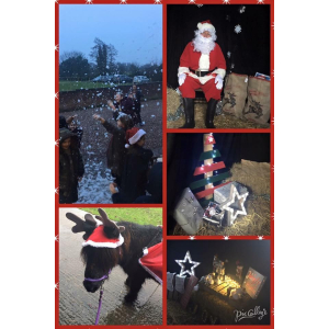 Christmas with Paddock Pony Parties