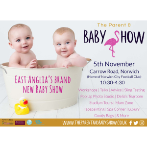 The Parent and Baby Show