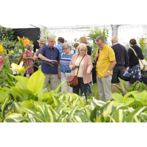 Visit - Blenheim Palace Flower Show with Lichfield Garden Centre