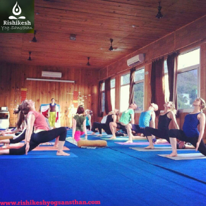 500 Hour Yoga Teacher Training In India.