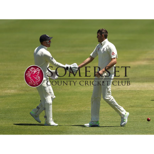 Somerset Cricket Club v Middlesex