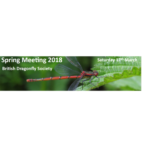 British Dragonfly Society Spring Meeting 2018