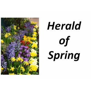 Herald of Spring Medieval Fair – Mother Nature at Bourne Hall #Ewell
