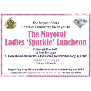The Mayoral Ladies 'Sparkle' Luncheon