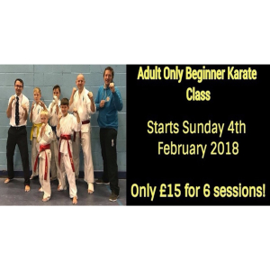 Adult Beginners Karate Course