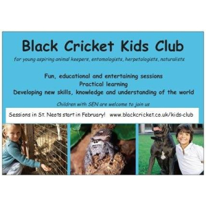 Black Cricket Kids Club - For young aspiring animal keepers