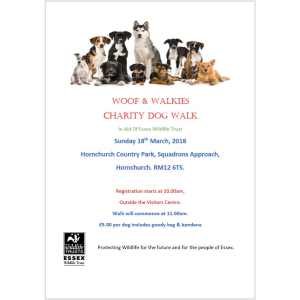 Charity Dog Walk