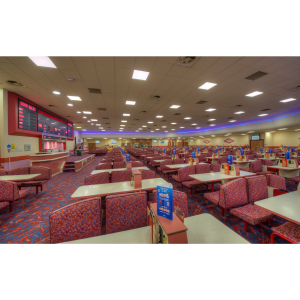 New Lunchtime Session at Apollo Bingo