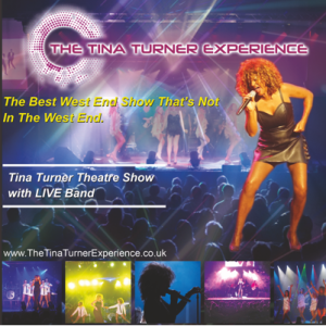 The Tina Turner Experience - Simply The Best