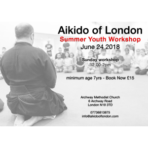 Aikido Youth Workshop