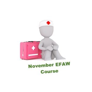 Emergency First Aid at Work Course - November
