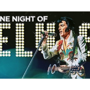 One Night of Elvis: Lee'Memphis' King