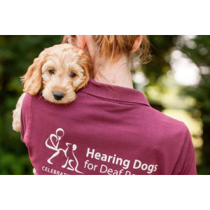 Music Concert in Aid of Hearing Dogs for Deaf People